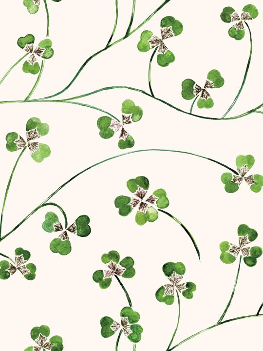 Clover Leaf wallpaper